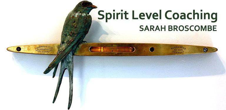 spirit-level-coaching-768