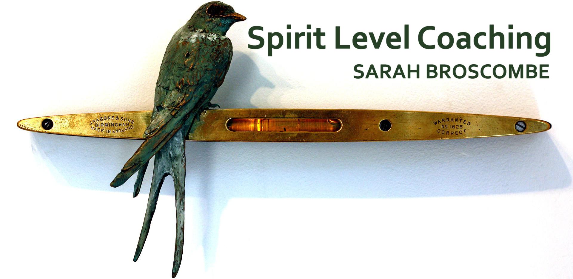 spirit-level-coaching-tight-crop-logo